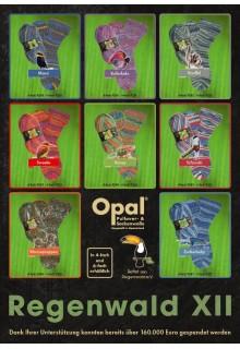 Opal Regenwald XII 6-ply