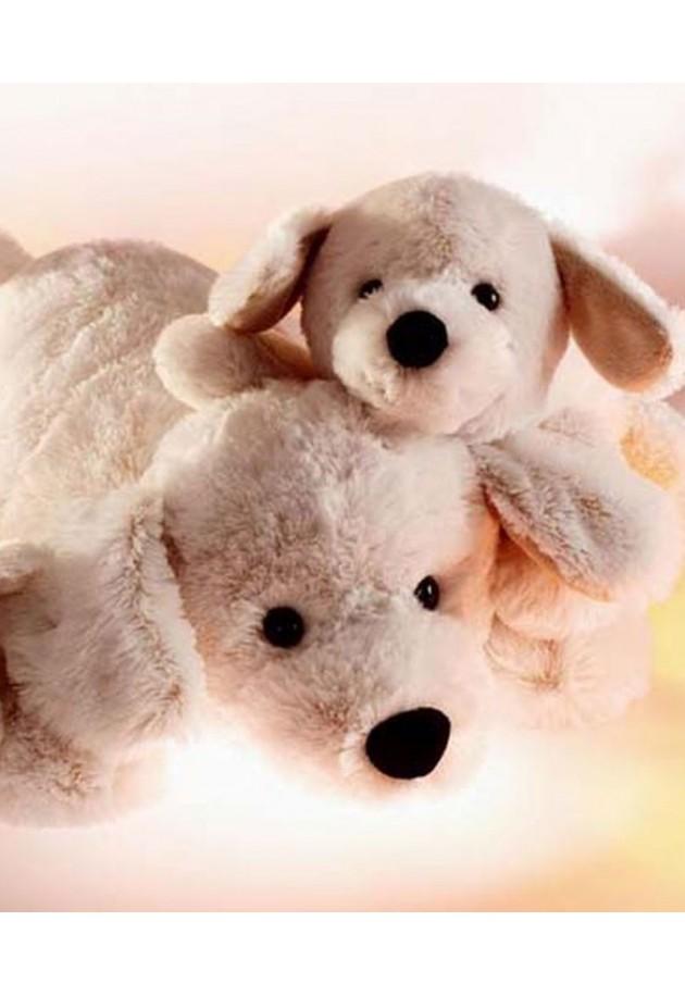 Hundehvalpen Sofus