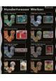 Opal Hundertwasser fra serierne I - III 6 tråds