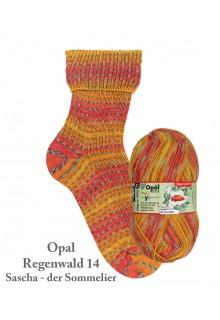 """Opal """"Regenwald 14"""" strømpegarn"""