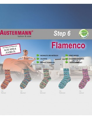 Flamenco Step 6