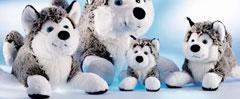 plysdyr, schaffer collectionhusky, polarhund