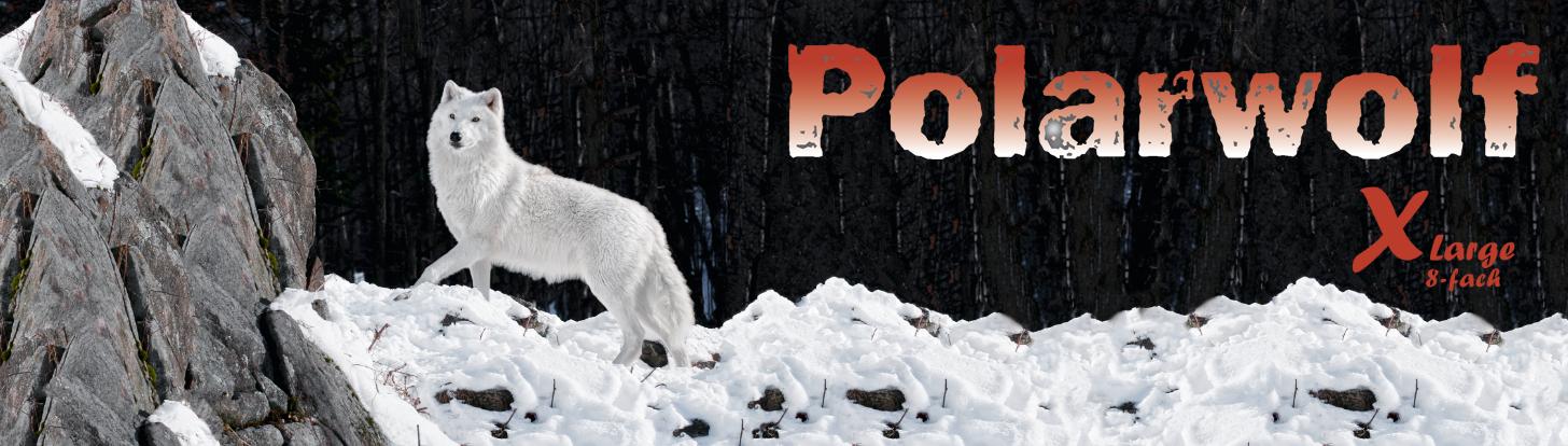 sokkegarn Polarwolf supervarmt sokkegarn fra Opal